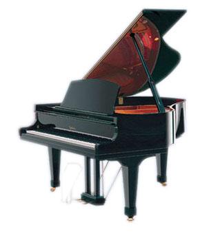 2010国内知名钢琴品牌排行榜图片
