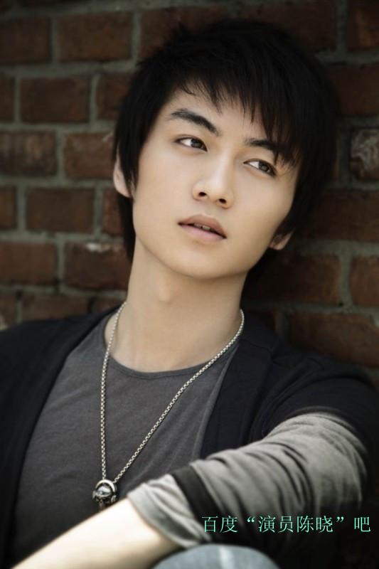 大陆电影男明星名字_陈晓-观众最喜爱的华人影视男明星排行榜